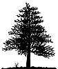 High detailed tree silhouette