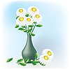 Vector clipart: Camomiles, bouquet