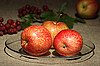 ID 3032660 | Jabłka na tekstyliów | Foto stockowe wysokiej rozdzielczości | KLIPARTO