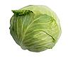 Single green cabbage | Stock Foto