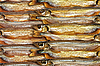 ID 3032690 | Background of smoked golden fish | High resolution stock photo | CLIPARTO