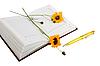 ID 3032721 | Tagebuch, gelbe Blüten und gelber Kugelschreiber | Foto mit hoher Auflösung | CLIPARTO
