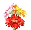 Photo 300 DPI: Bouquet of three flowers
