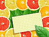 Photo 300 DPI: background of citrus slices with frame