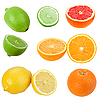 Photo 300 DPI: Set of citrus fruits