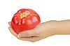 Tomato in hand | Stock Foto