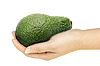 ID 3033011 | Avocado w ręku | Foto stockowe wysokiej rozdzielczości | KLIPARTO