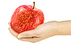 ID 3033030 | Red apple in hand | High resolution stock photo | CLIPARTO