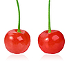 两个红色的甜樱桃 | 免版税照片