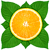 Slice of orange with green leaves | Stock Foto