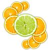 Citrus fruits | Stock Foto