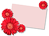 Photo 300 DPI: red flowers with message-card