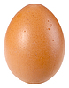 Single brown egg | Stock Foto