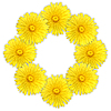 Frame as ring of yellow flowers | Stock Foto
