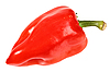 ID 3033202 | Red fresh pepper | High resolution stock photo | CLIPARTO