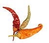 Three dried chilli-pepper | Stock Foto