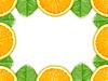 ID 3033239 | Rahmen aus Apfelsine-Scheiben | Foto mit hoher Auflösung | CLIPARTO