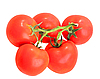 Bunch with red tomatos | Stock Foto
