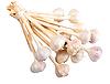 Bunch of white garlics | Stock Foto