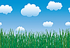 Vector clipart: grass and sky