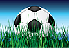 Vector clipart: Soccer ball on grass