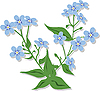 Vector clipart: forget-me-not flower