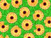 ID 3144378 | Tło z kwiatów pomarańczy i liści | Foto stockowe wysokiej rozdzielczości | KLIPARTO