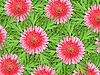 ID 3144379 | Фон розовые цветы и зеленые листья | Фото большого размера | CLIPARTO