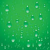 Vector clipart: Drops on green background