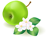 Vector clipart: Green apple with leaf and flowers