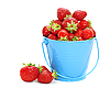 Strawberries in bucket | Stock Foto