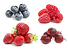 ID 3013204 | Summer berries | High resolution stock photo | CLIPARTO