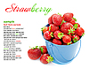 Strawberries in bucket on white. | Stock Foto