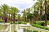 Фото 300 DPI: пальмовая аллея и фонтан