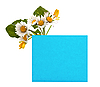 Photo 300 DPI: blue space for text with fresh flowers