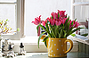 Bouquet of tulips on the windowsill | Stock Foto