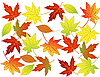 Vector clipart: Autumn leaf background