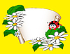 Vector clipart: card with daisies and ladybug