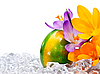 Easter egg with flowers on ice | Stock Foto