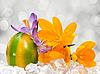 用鲜花复活节彩蛋 | 免版税照片