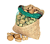 Mixture of nuts in sack | Stock Foto