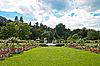 ID 3018733 | Park of roses. Germany, Baden-Baden. | High resolution stock photo | CLIPARTO