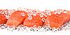 Salmon on ice   Stock Foto