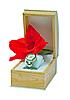 ID 3019335 | Zestaw upominkowy - damskie zegarki oraz mieczyk. | Foto stockowe wysokiej rozdzielczości | KLIPARTO