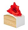 ID 3019336 | Geschenkbox mit Gladiolenblume | Foto mit hoher Auflösung | CLIPARTO