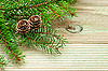 Pine branch with cones | Stock Foto