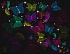 Векторный клипарт: черный фон с бабочками