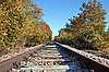 Railway in autumn forest | Stock Foto