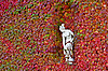 Sculpture of woman in the wall of autumn leaves | Stock Foto