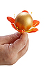 Golden Egg in hand with flower | Stock Foto